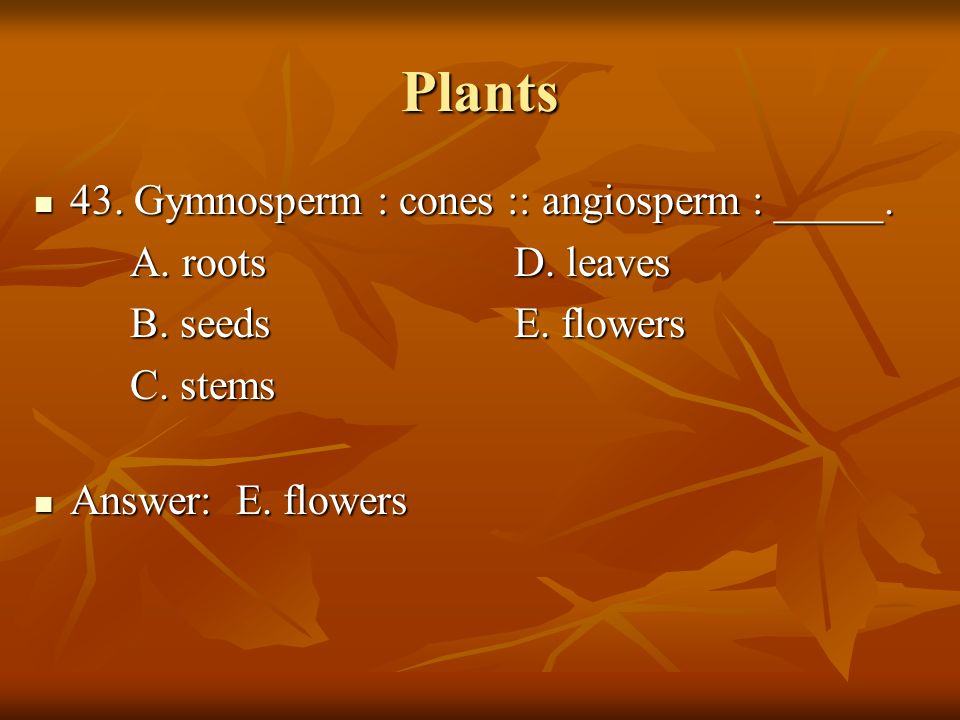 Plants 43. Gymnosperm : cones :: angiosperm : _____.