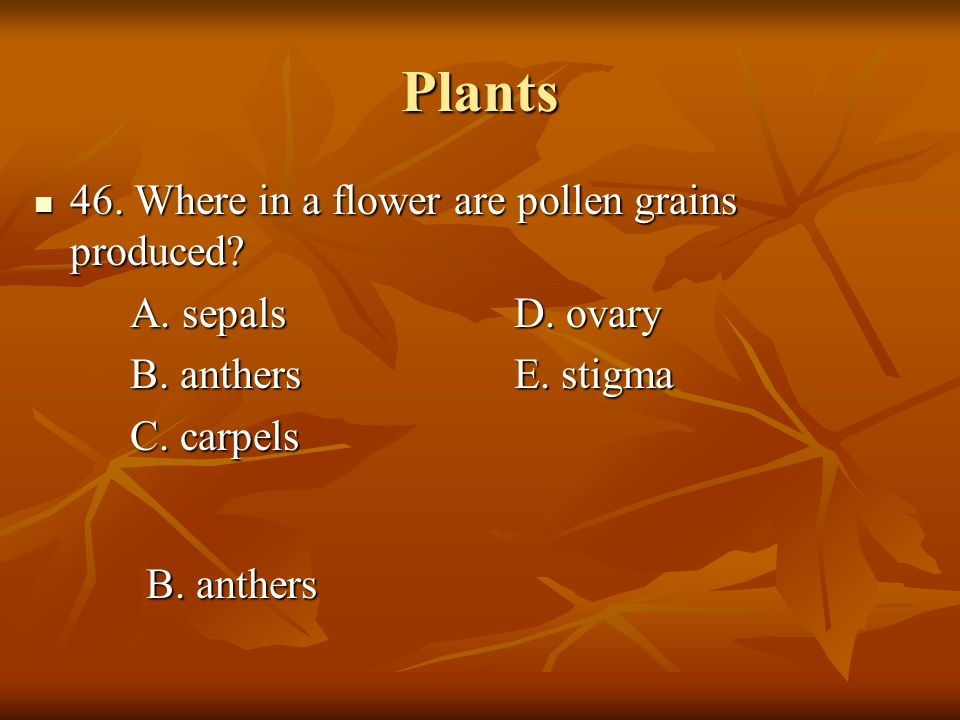 Plants 46. Where in a flower are pollen grains produced