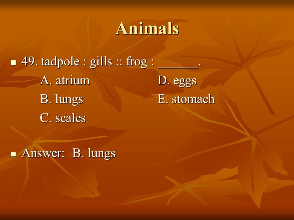 Animals 49. tadpole : gills :: frog : ______. A. atrium D. eggs