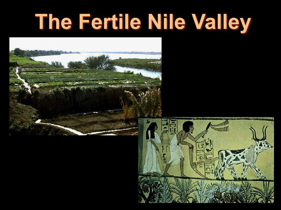 The Fertile Nile Valley