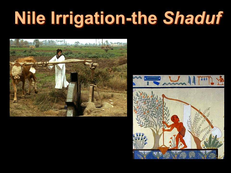 Nile Irrigation-the Shaduf
