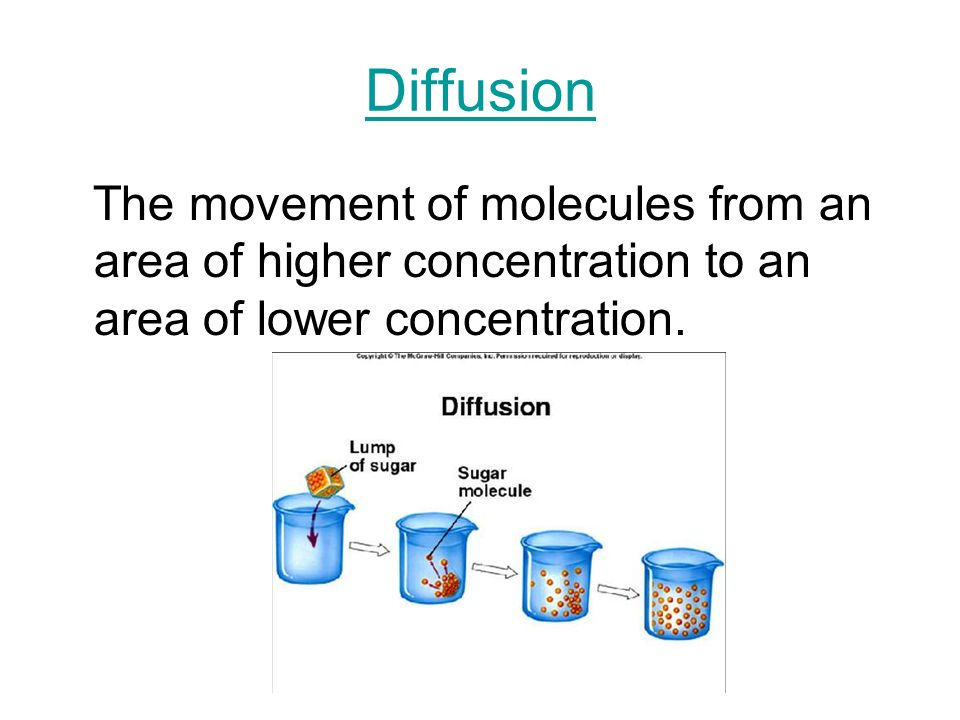 Diffusion The movement of molecules from an area of higher concentration to an area of lower concentration.
