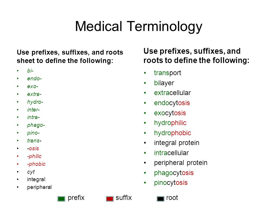 Medical Terminology Use prefixes, suffixes, and roots sheet to define the following: Use prefixes, suffixes, and roots to define the following:
