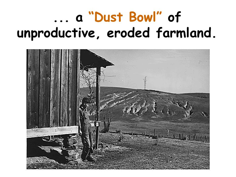 ... a Dust Bowl of unproductive, eroded farmland.