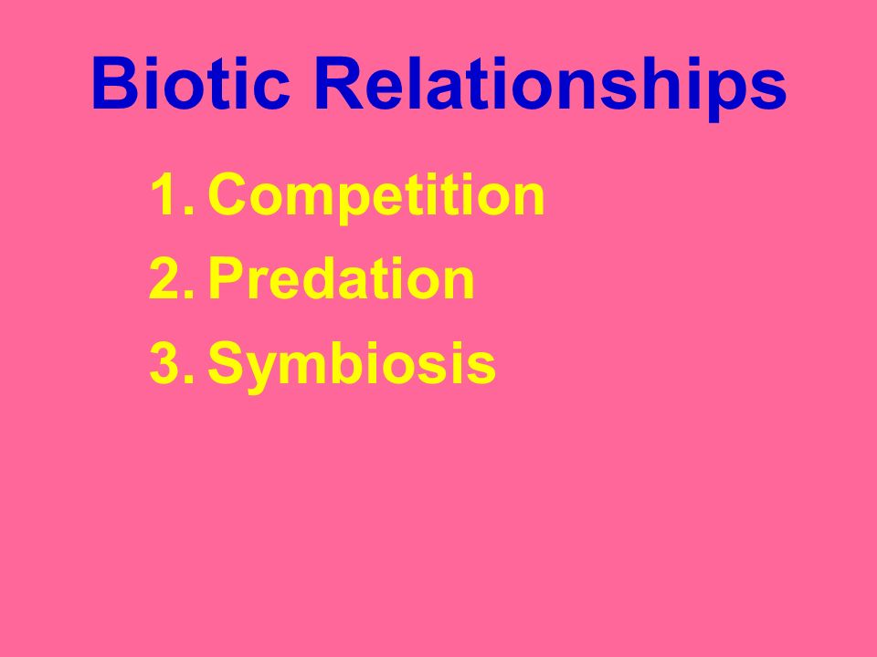 Biotic Relationships Competition Predation Symbiosis