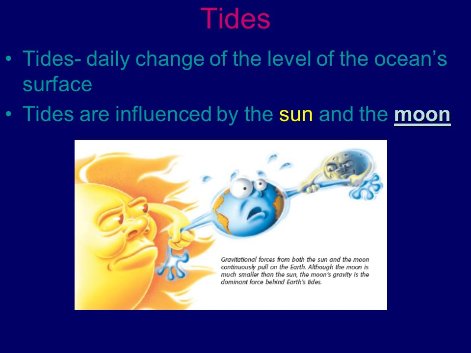 Tides Tides- daily change of the level of the ocean's surface
