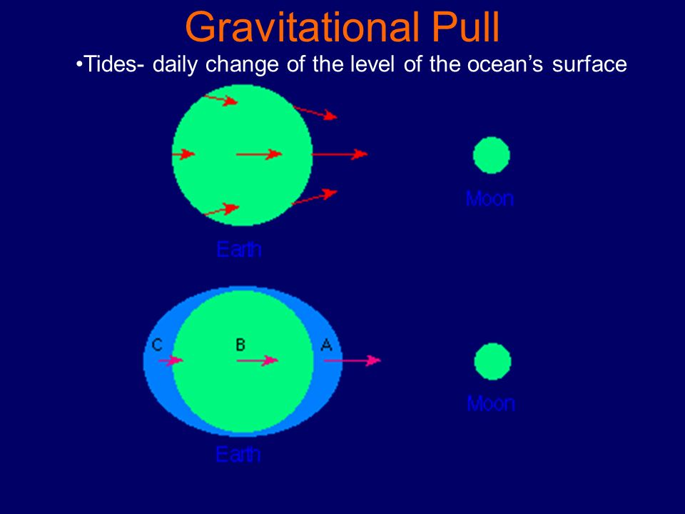 Gravitational Pull Tides- daily change of the level of the ocean's surface