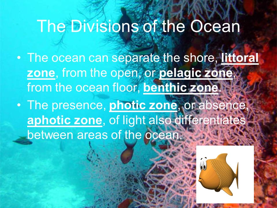 The Divisions of the Ocean