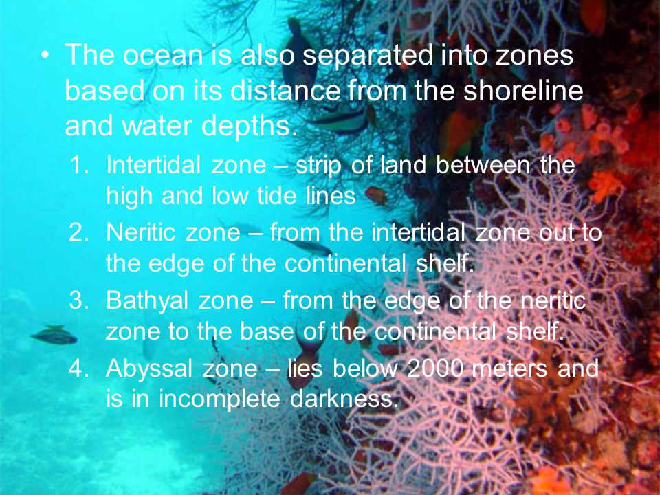 The ocean is also separated into zones based on its distance from the shoreline and water depths.
