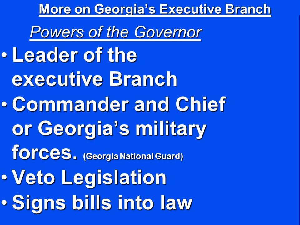 More on Georgia's Executive Branch