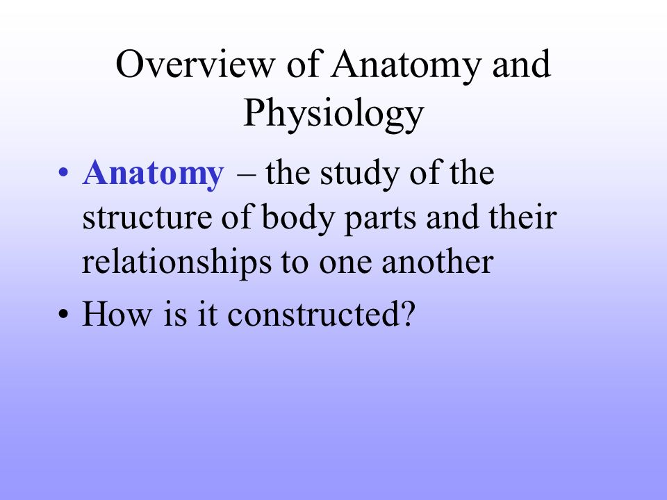 A Complete Overview Of Anatomy And Physiology