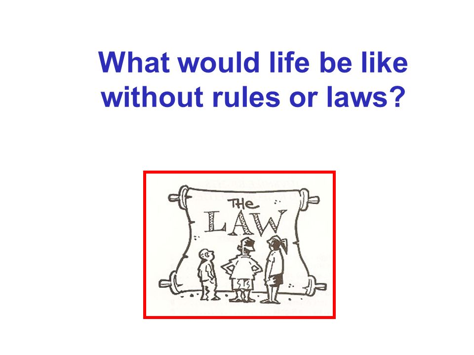 What would life be like without rules or laws
