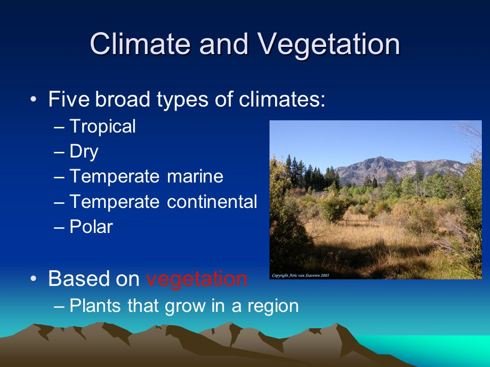 vegetation and climate relationship