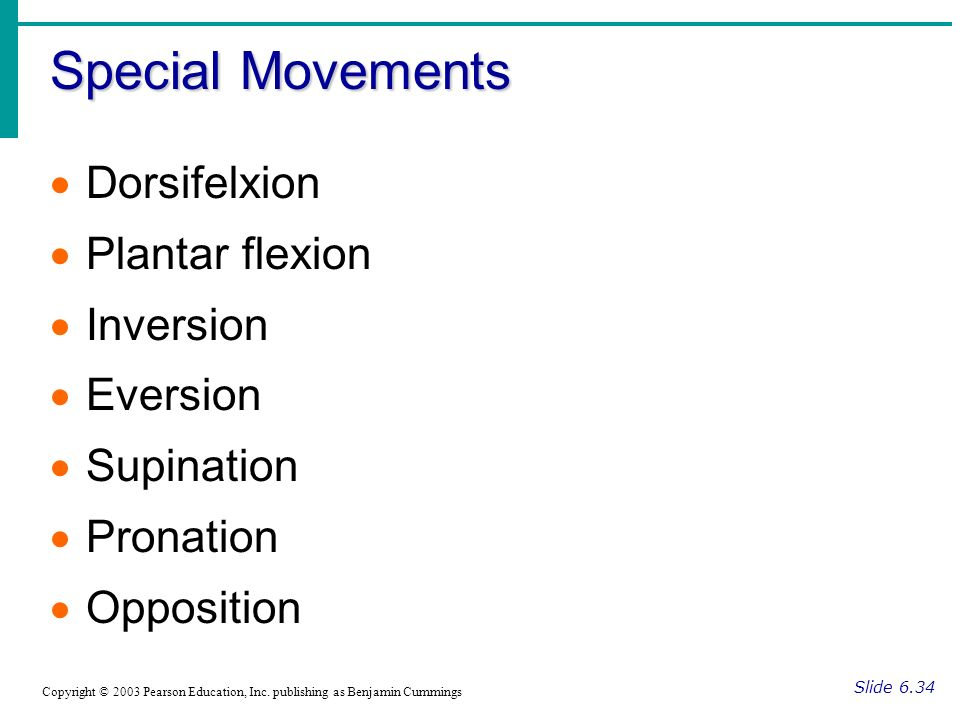 Special Movements Dorsifelxion Plantar flexion Inversion Eversion