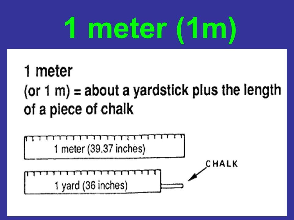 1 meter (1m)