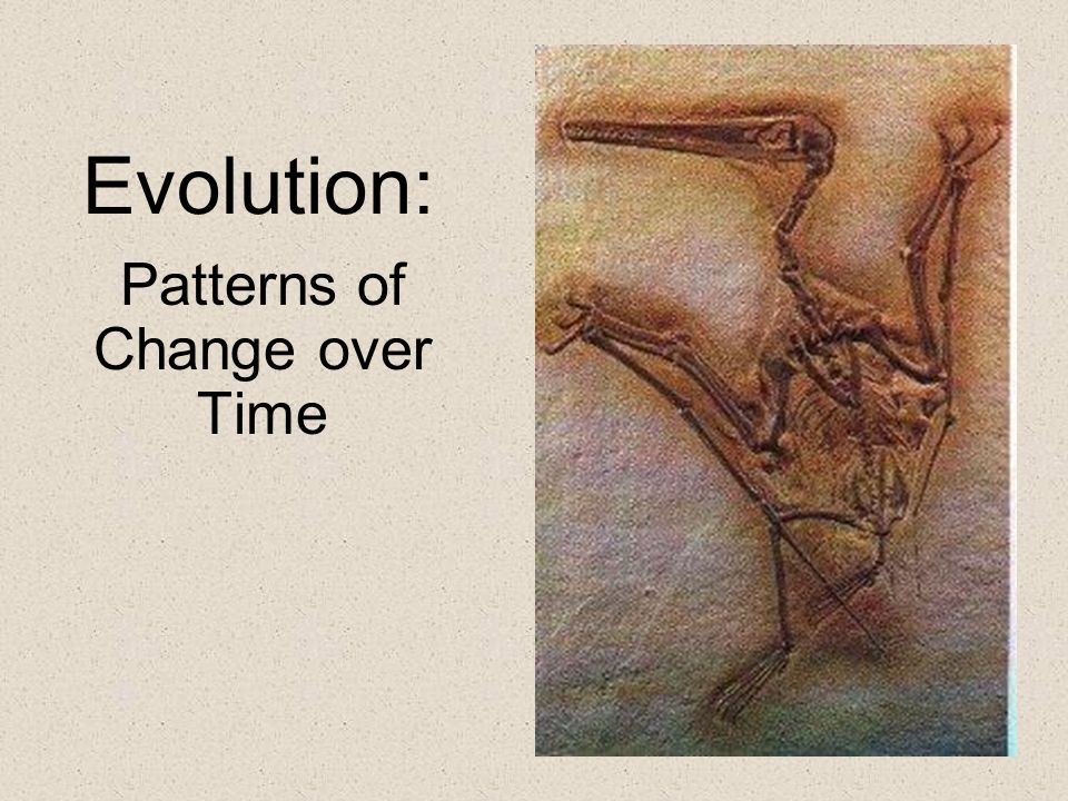 Patterns of Change over Time