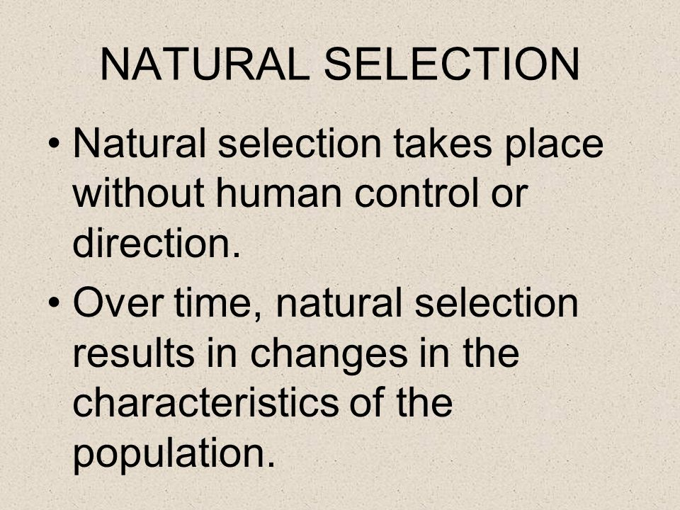 NATURAL SELECTION Natural selection takes place without human control or direction.