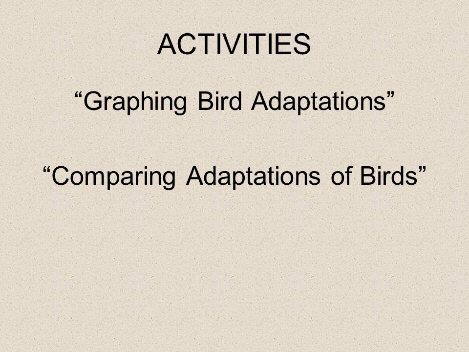 ACTIVITIES Graphing Bird Adaptations