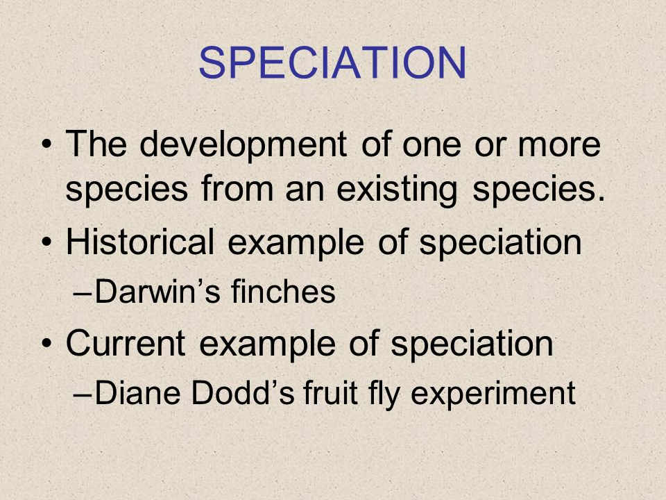 SPECIATION The development of one or more species from an existing species. Historical example of speciation.