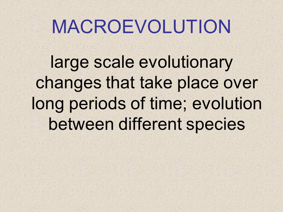 MACROEVOLUTION large scale evolutionary changes that take place over long periods of time; evolution between different species.