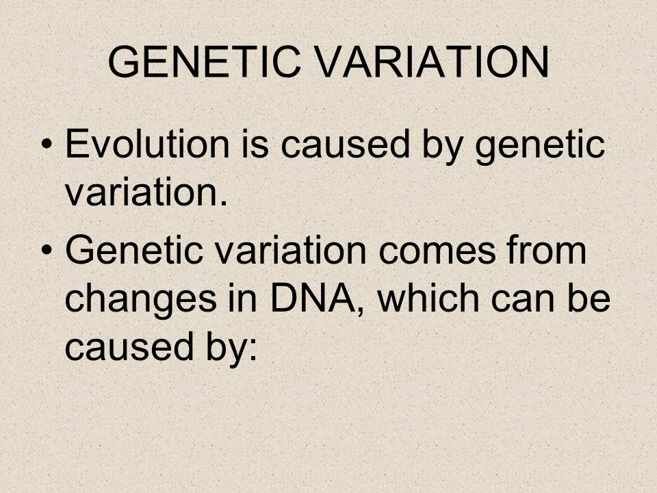 GENETIC VARIATION Evolution is caused by genetic variation.