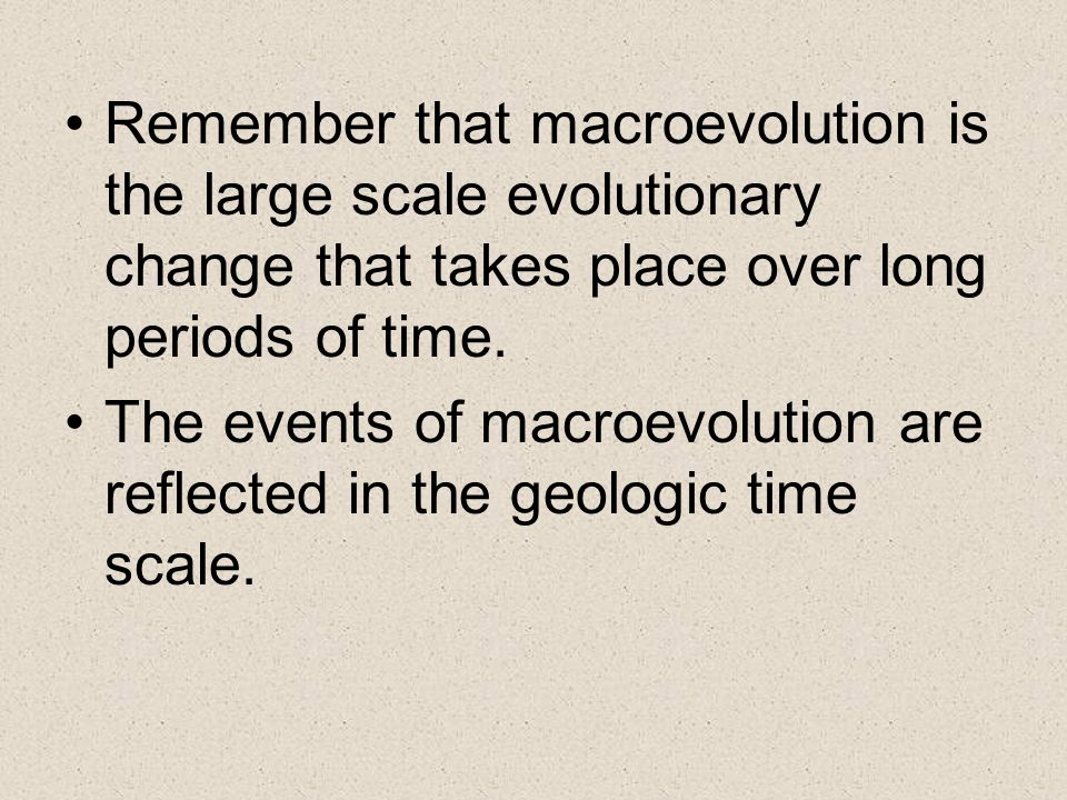 Remember that macroevolution is the large scale evolutionary change that takes place over long periods of time.