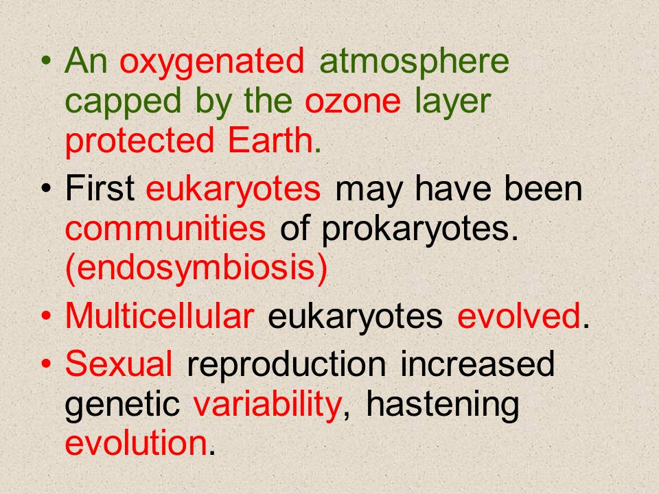 An oxygenated atmosphere capped by the ozone layer protected Earth.