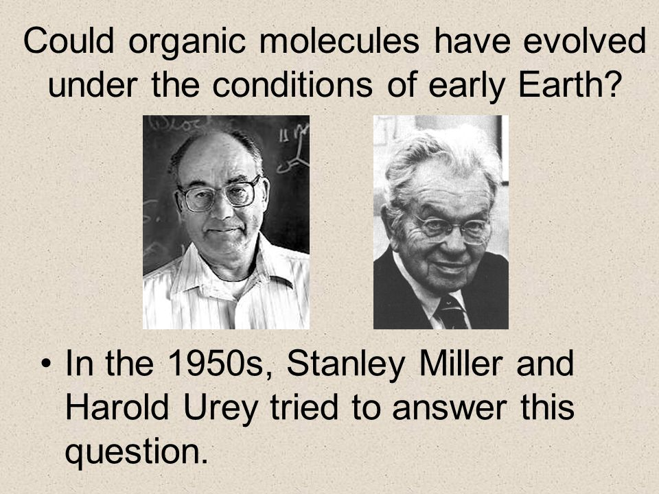 Could organic molecules have evolved under the conditions of early Earth