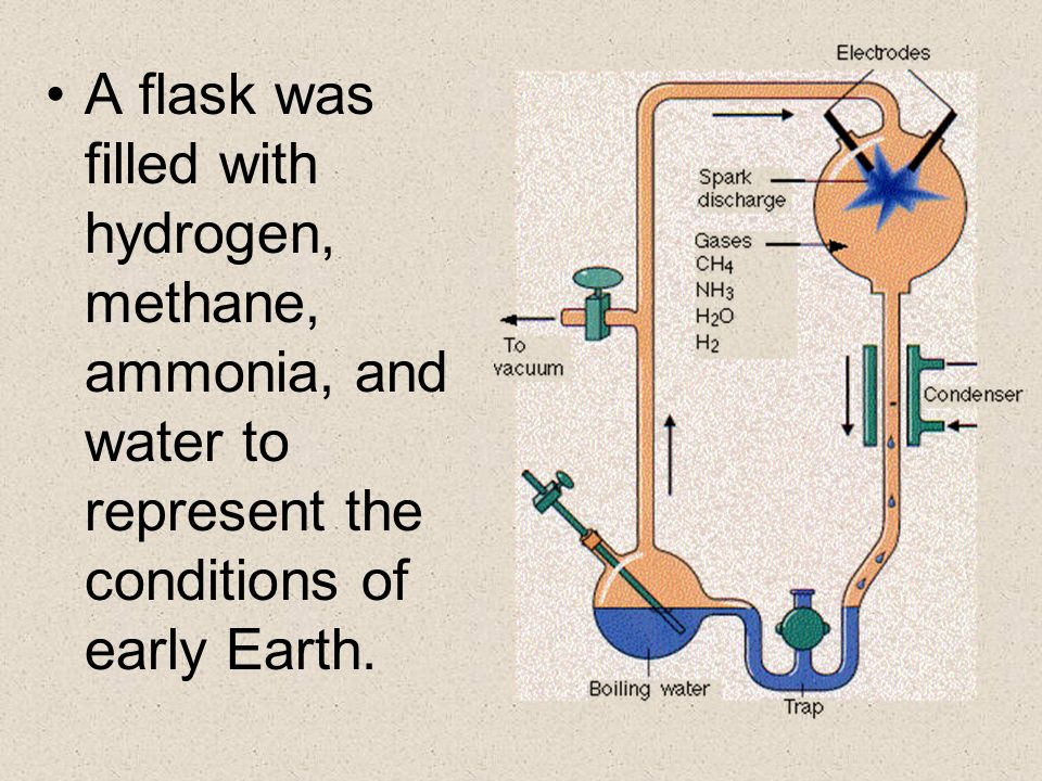 A flask was filled with hydrogen, methane, ammonia, and water to represent the conditions of early Earth.