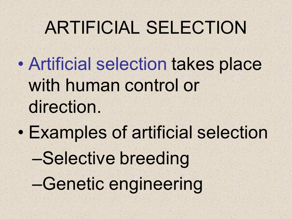ARTIFICIAL SELECTION Artificial selection takes place with human control or direction. Examples of artificial selection.