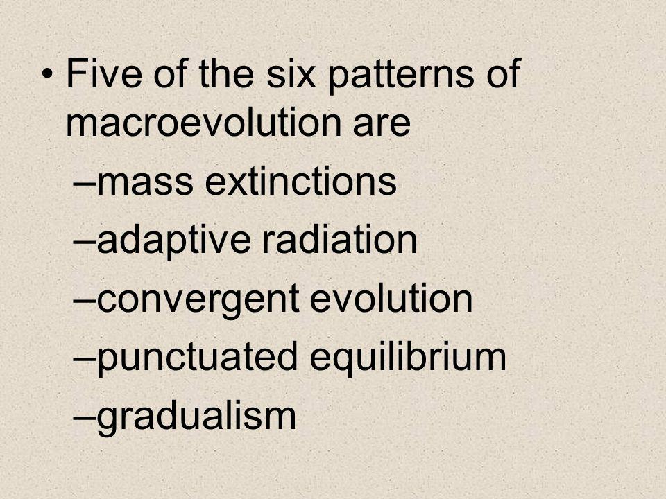 Five of the six patterns of macroevolution are