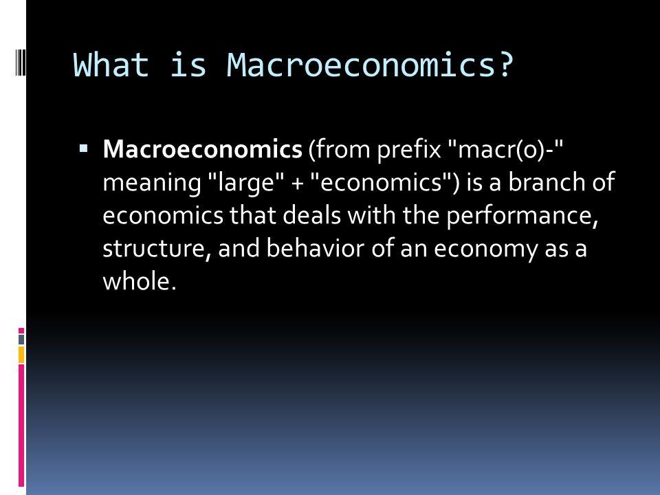 What is Macroeconomics