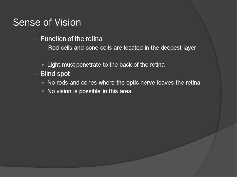 Sense of Vision Function of the retina Blind spot