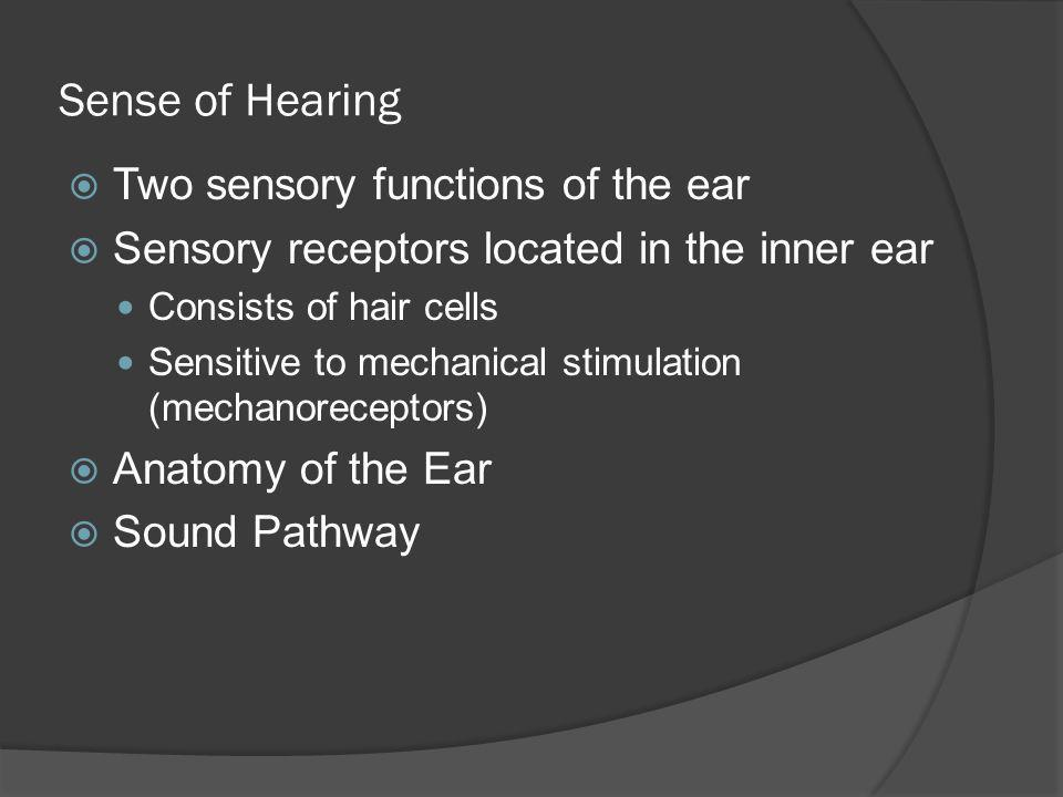 Sense of Hearing Two sensory functions of the ear