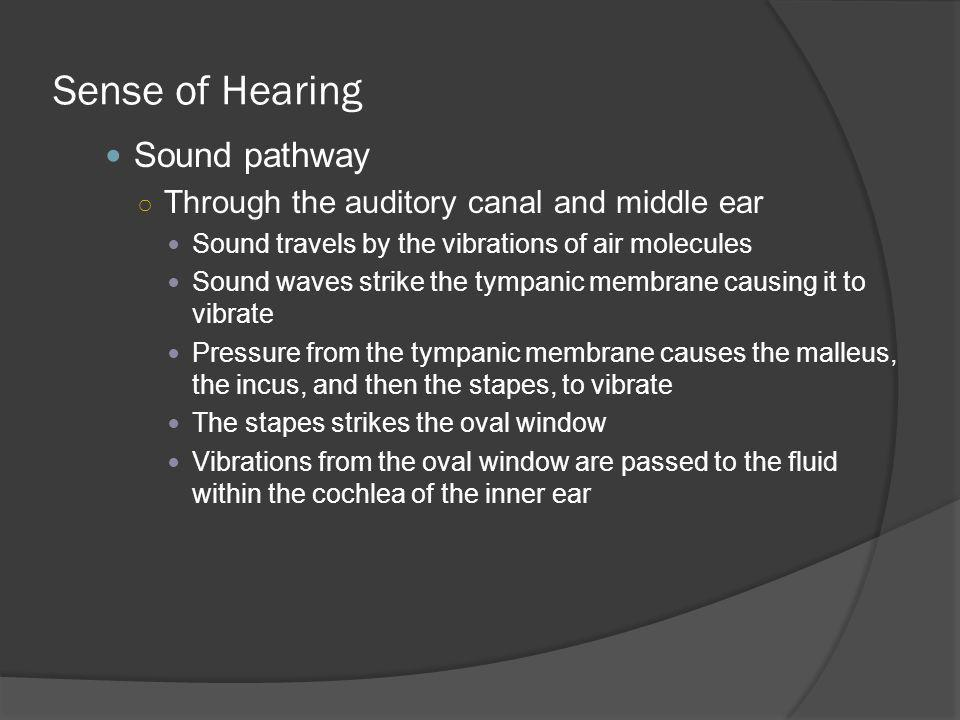 Sense of Hearing Sound pathway