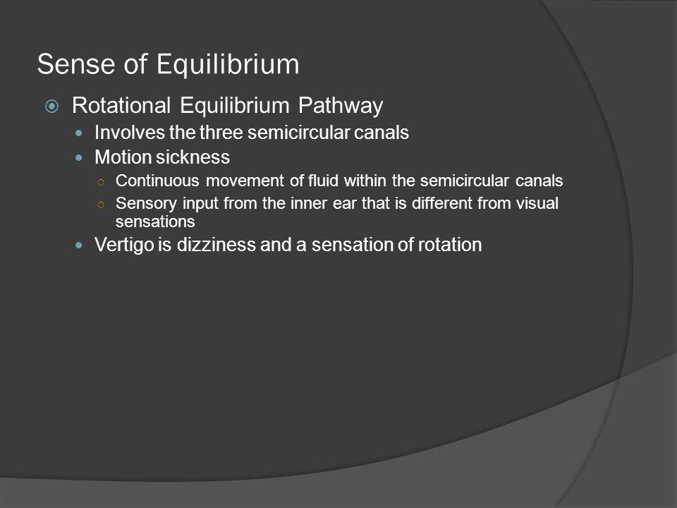 Sense of Equilibrium Rotational Equilibrium Pathway