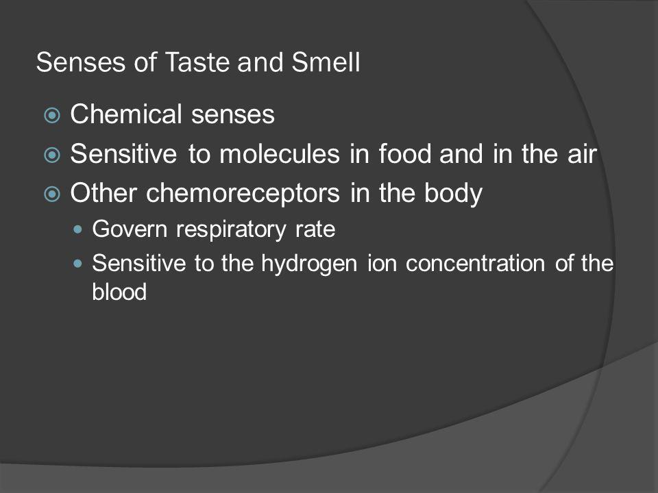 Senses of Taste and Smell