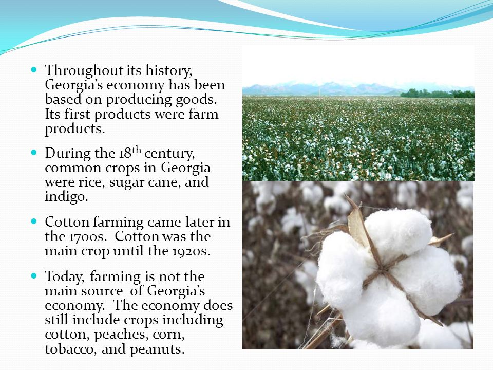 Throughout its history, Georgia's economy has been based on producing goods. Its first products were farm products.