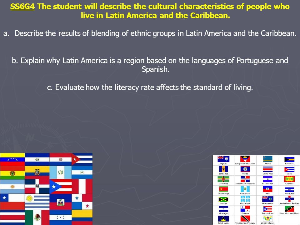 c. Evaluate how the literacy rate affects the standard of living.