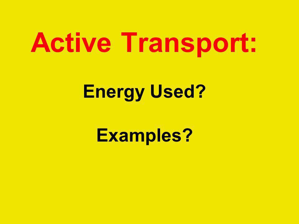 Active Transport: Energy Used Examples