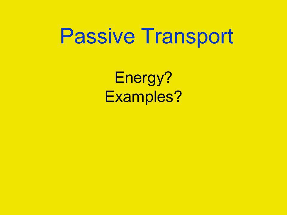 Passive Transport Energy Examples