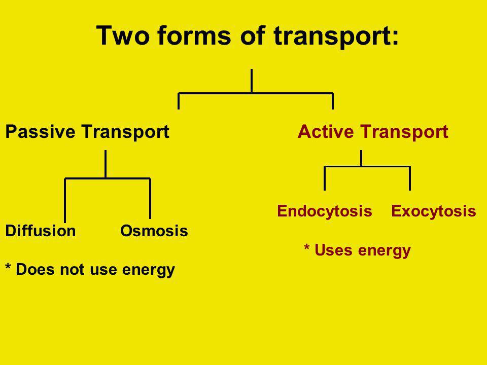 Two forms of transport: