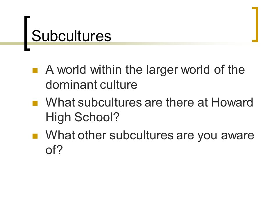 Subcultures A world within the larger world of the dominant culture