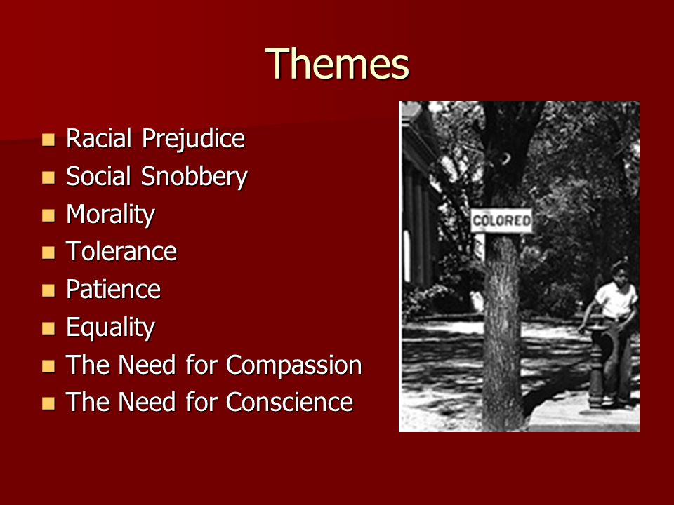 Themes Racial Prejudice Social Snobbery Morality Tolerance Patience