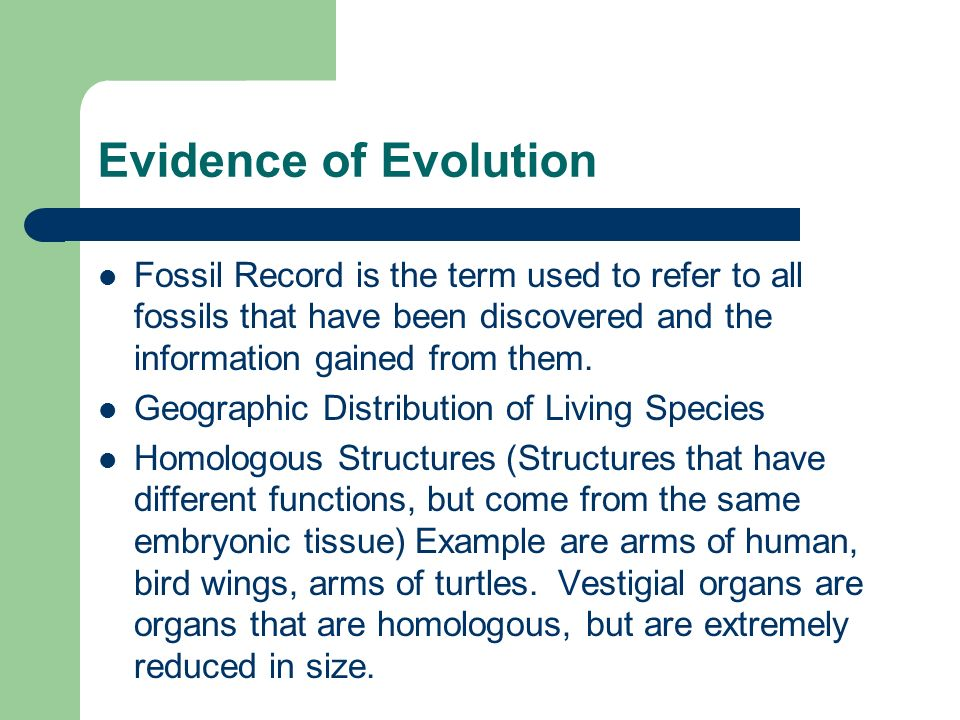 Evidence of Evolution Fossil Record is the term used to refer to all fossils that have been discovered and the information gained from them.