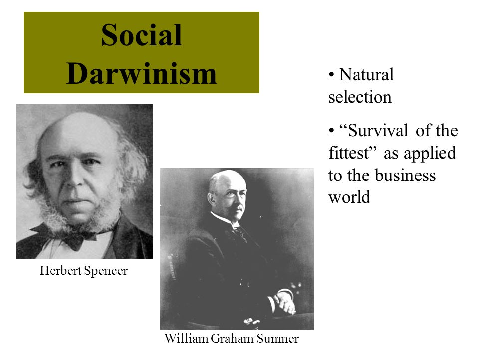 Social Darwinism Natural selection
