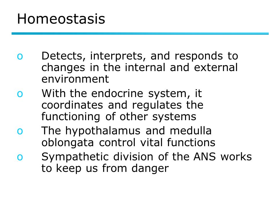 Homeostasis Detects, interprets, and responds to changes in the internal and external environment.