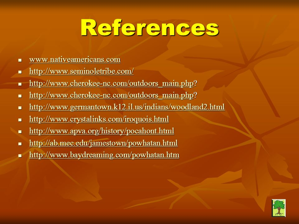 References www.nativeamericans.com http://www.seminoletribe.com/