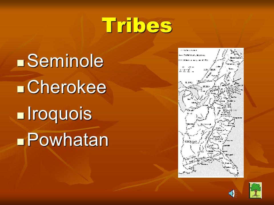 Tribes Seminole Cherokee Iroquois Powhatan