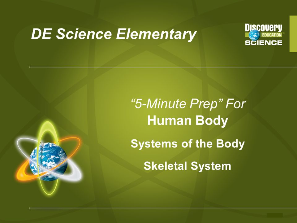5-Minute Prep For Human Body